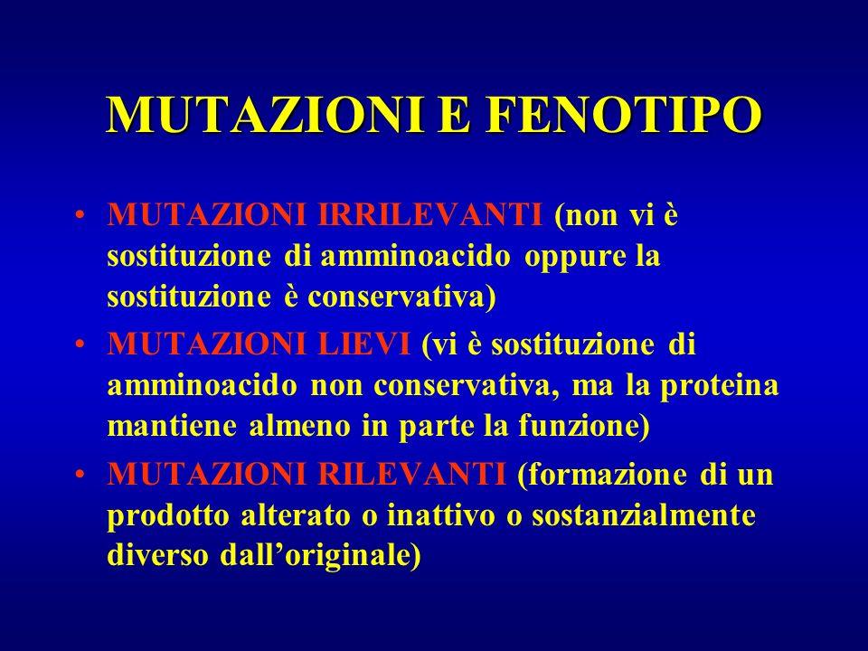 MUTAZIONI E FENOTIPO MUTAZIONI IRRILEVANTI (non vi è sostituzione di amminoacido oppure la sostituzione è conservativa) MUTAZIONI LIEVI (vi è sostituz