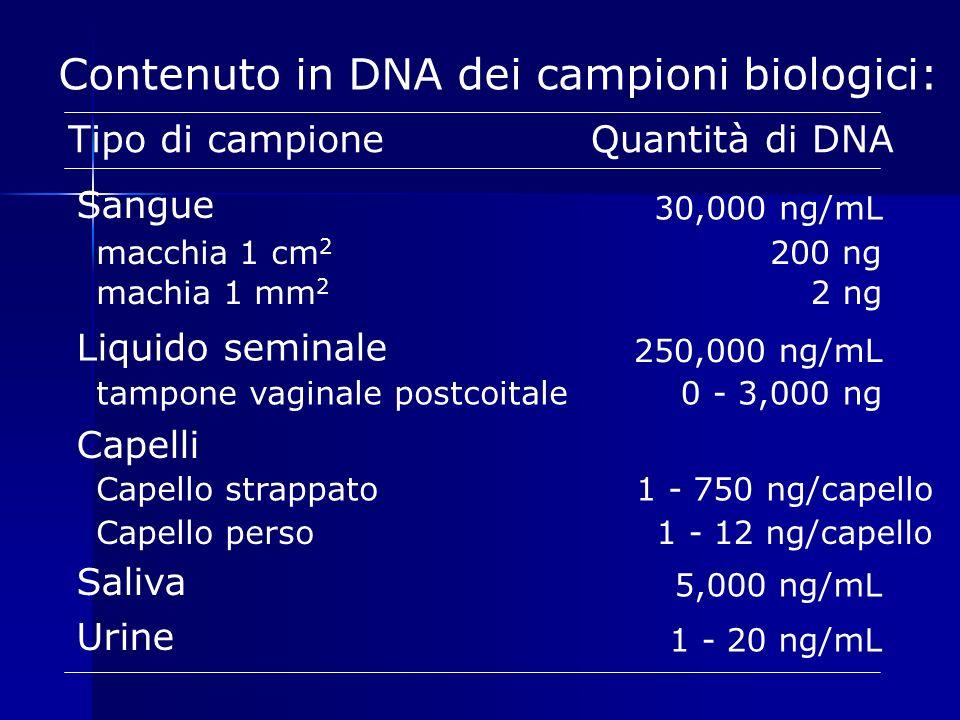 Contenuto in DNA dei campioni biologici: Tipo di campioneQuantità di DNA Sangue 30,000 ng/mL macchia 1 cm 2 200 ng machia 1 mm 2 2 ng Liquido seminale