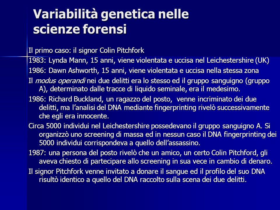 Variabilità genetica nelle scienze forensi Il primo caso: il signor Colin Pitchfork 1983: Lynda Mann, 15 anni, viene violentata e uccisa nel Leicheste