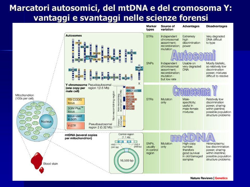 Marcatori autosomici, del mtDNA e del cromosoma Y: vantaggi e svantaggi nelle scienze forensi