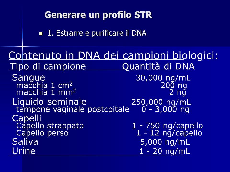 Generare un profilo STR 1. Estrarre e purificare il DNA 1. Estrarre e purificare il DNA Contenuto in DNA dei campioni biologici: Tipo di campioneQuant