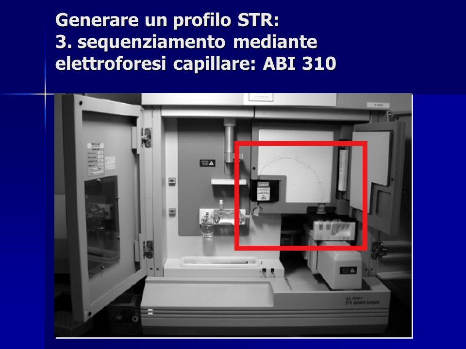 Generare un profilo STR: 3. sequenziamento mediante elettroforesi capillare: ABI 310
