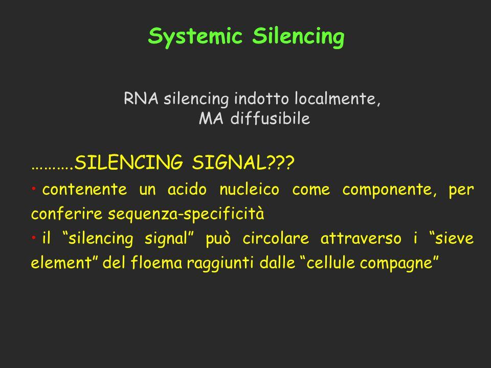 Systemic Silencing RNA silencing indotto localmente, MA diffusibile ……….SILENCING SIGNAL??? contenente un acido nucleico come componente, per conferir