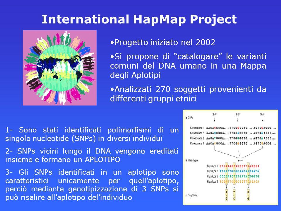 International HapMap Project Progetto iniziato nel 2002 Si propone di catalogare le varianti comuni del DNA umano in una Mappa degli Aplotipi Analizza