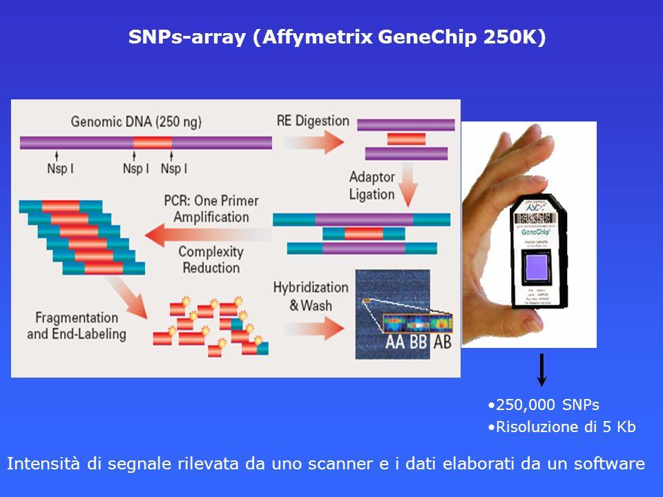SNPs-array (Affymetrix GeneChip 250K) 250,000 SNPs Risoluzione di 5 Kb Intensità di segnale rilevata da uno scanner e i dati elaborati da un software