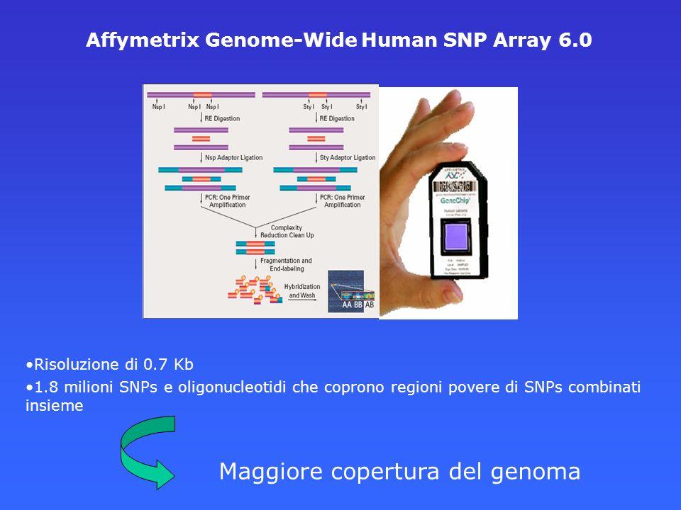 Risoluzione di 0.7 Kb 1.8 milioni SNPs e oligonucleotidi che coprono regioni povere di SNPs combinati insieme Affymetrix Genome-Wide Human SNP Array 6