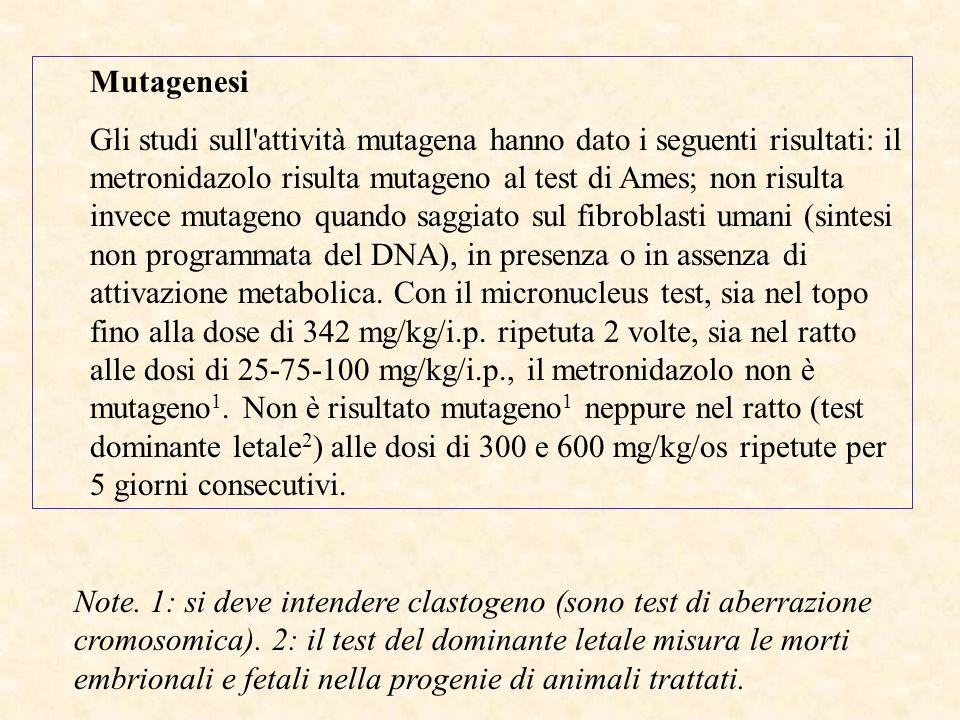 Mutagenesi Gli studi sull attività mutagena hanno dato i seguenti risultati: il metronidazolo risulta mutageno al test di Ames; non risulta invece mutageno quando saggiato sul fibroblasti umani (sintesi non programmata del DNA), in presenza o in assenza di attivazione metabolica.