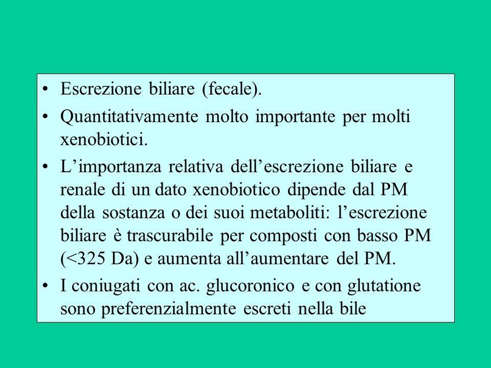 Escrezione biliare (fecale). Quantitativamente molto importante per molti xenobiotici. Limportanza relativa dellescrezione biliare e renale di un dato