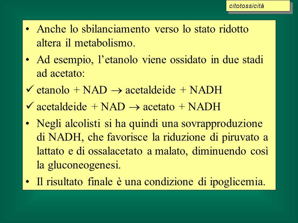 Anche lo sbilanciamento verso lo stato ridotto altera il metabolismo. Ad esempio, letanolo viene ossidato in due stadi ad acetato: etanolo + NAD aceta