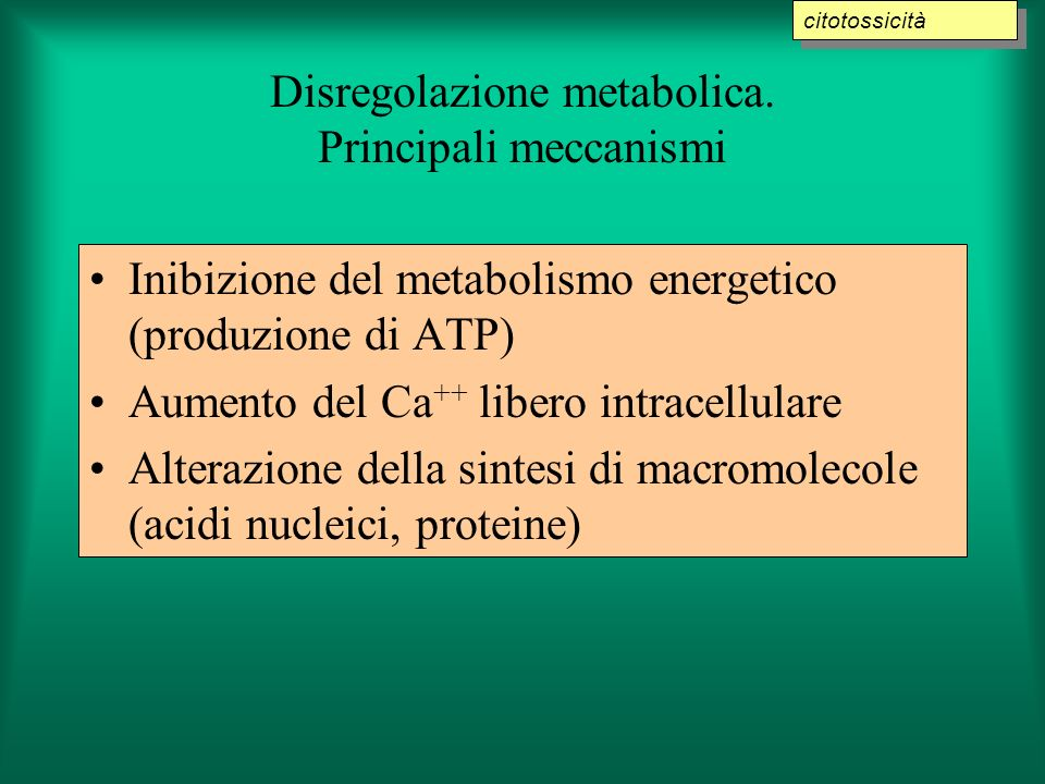 Disregolazione metabolica. Principali meccanismi Inibizione del metabolismo energetico (produzione di ATP) Aumento del Ca ++ libero intracellulare Alt