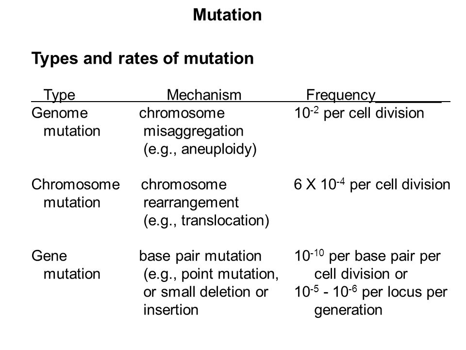 Types and rates of mutation Type Mechanism Frequency________ Genome chromosome10 -2 per cell division mutation misaggregation (e.g., aneuploidy) Chrom