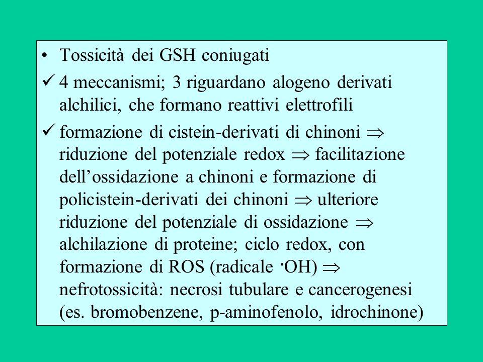 Tossicità dei GSH coniugati 4 meccanismi; 3 riguardano alogeno derivati alchilici, che formano reattivi elettrofili formazione di cistein-derivati di