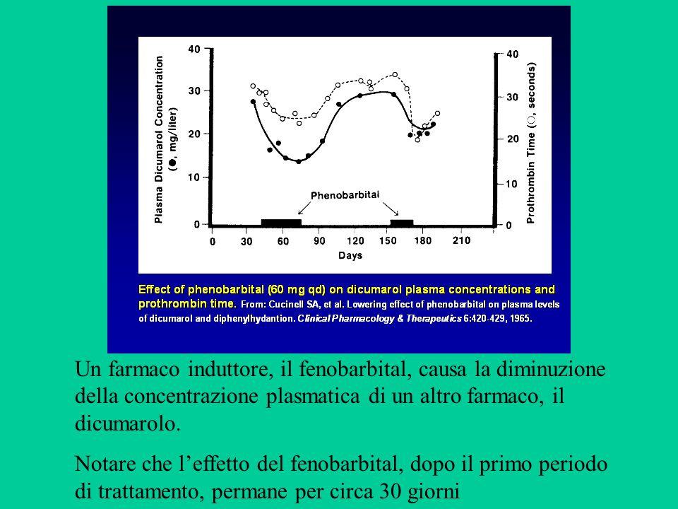 Un farmaco induttore, il fenobarbital, causa la diminuzione della concentrazione plasmatica di un altro farmaco, il dicumarolo. Notare che leffetto de