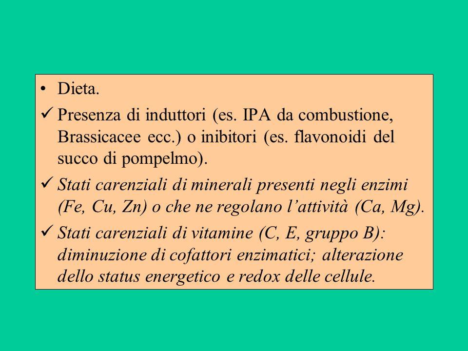Dieta. Presenza di induttori (es. IPA da combustione, Brassicacee ecc.) o inibitori (es. flavonoidi del succo di pompelmo). Stati carenziali di minera