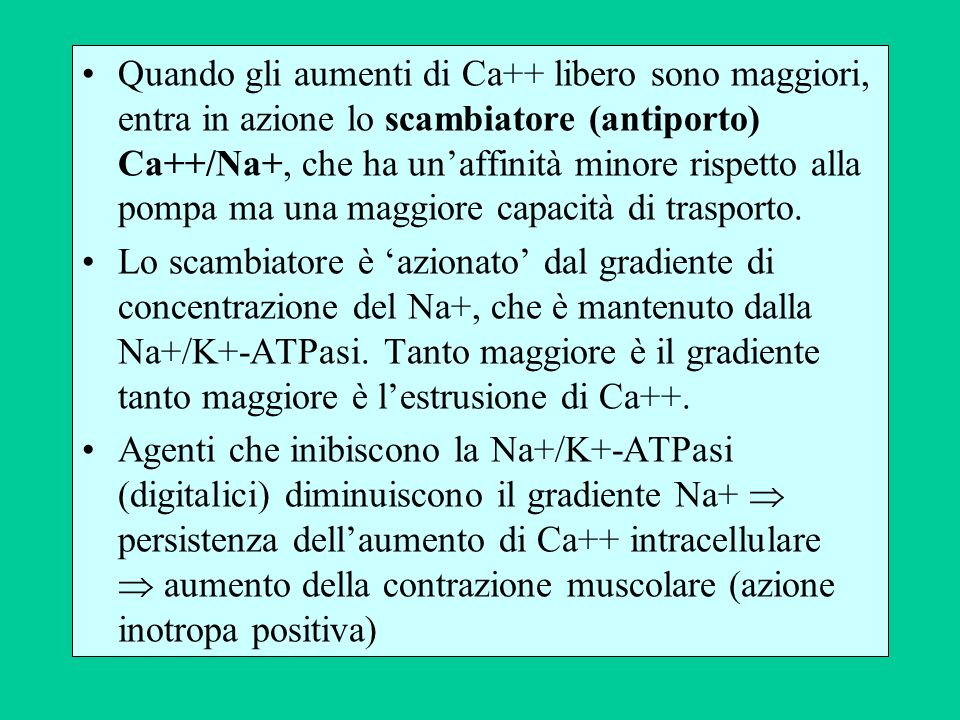 Quando gli aumenti di Ca++ libero sono maggiori, entra in azione lo scambiatore (antiporto) Ca++/Na+, che ha unaffinità minore rispetto alla pompa ma una maggiore capacità di trasporto.
