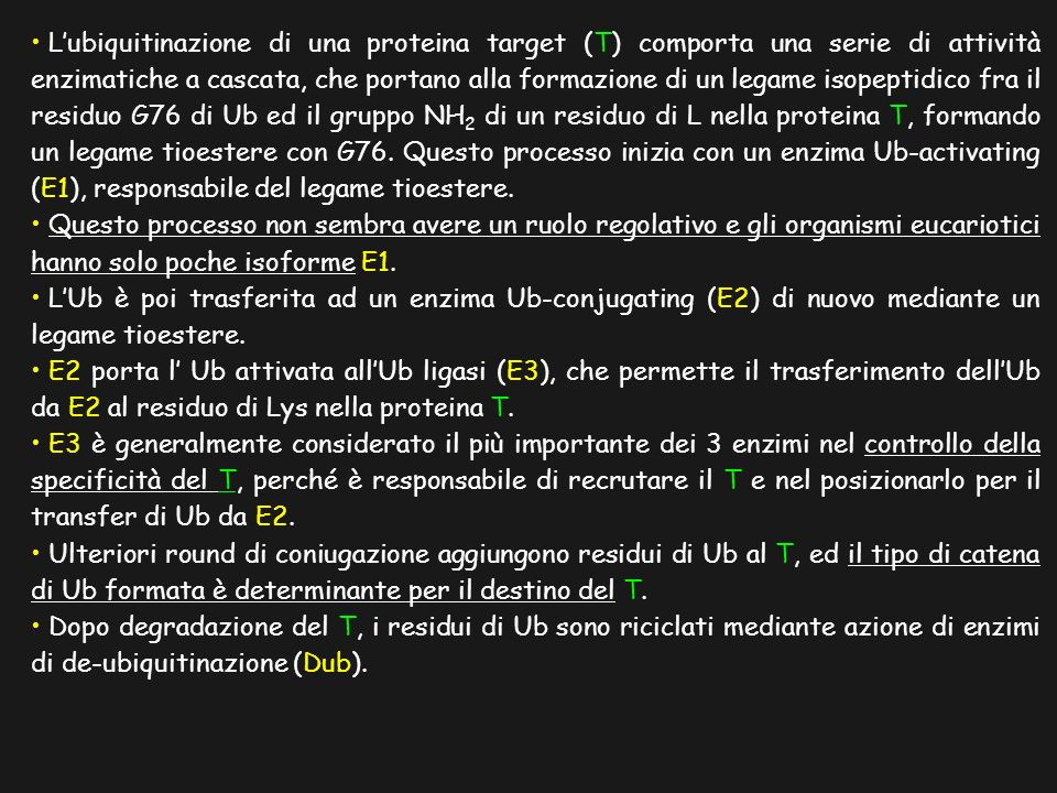 Il Pathway dell Ubiquitina/Proteosoma