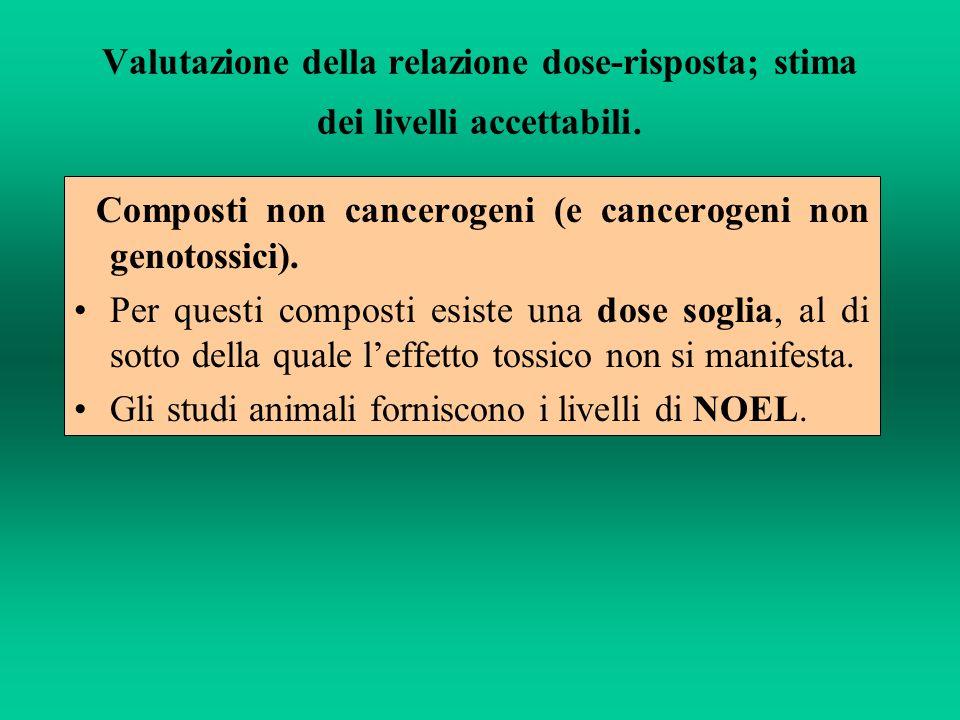 I valori di NOEL sono la base di partenza per il calcolo dei livelli accettabili.