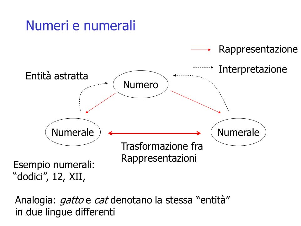 Numeri e numerali Numero Numerale Rappresentazione Interpretazione Trasformazione fra Rappresentazioni Esempio numerali: dodici, 12, XII, Entità astratta Analogia: gatto e cat denotano la stessa entità in due lingue differenti