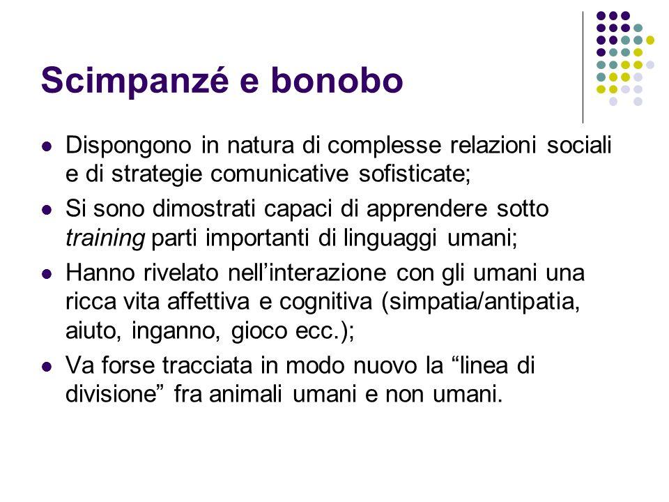 Scimpanzé e bonobo Dispongono in natura di complesse relazioni sociali e di strategie comunicative sofisticate; Si sono dimostrati capaci di apprender