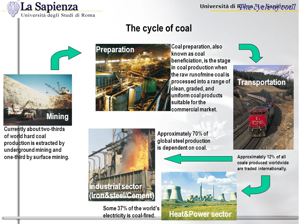 Università di Roma La Sapienza How much coal … (coal reserves/resources) A Mineral Resource is a concentration or occurrence of material of economic i
