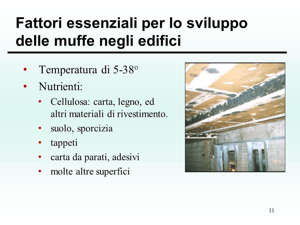 11 Fattori essenziali per lo sviluppo delle muffe negli edifici Temperatura di 5-38 o Temperatura di 5-38 o Nutrienti: Nutrienti: Cellulosa: carta, le