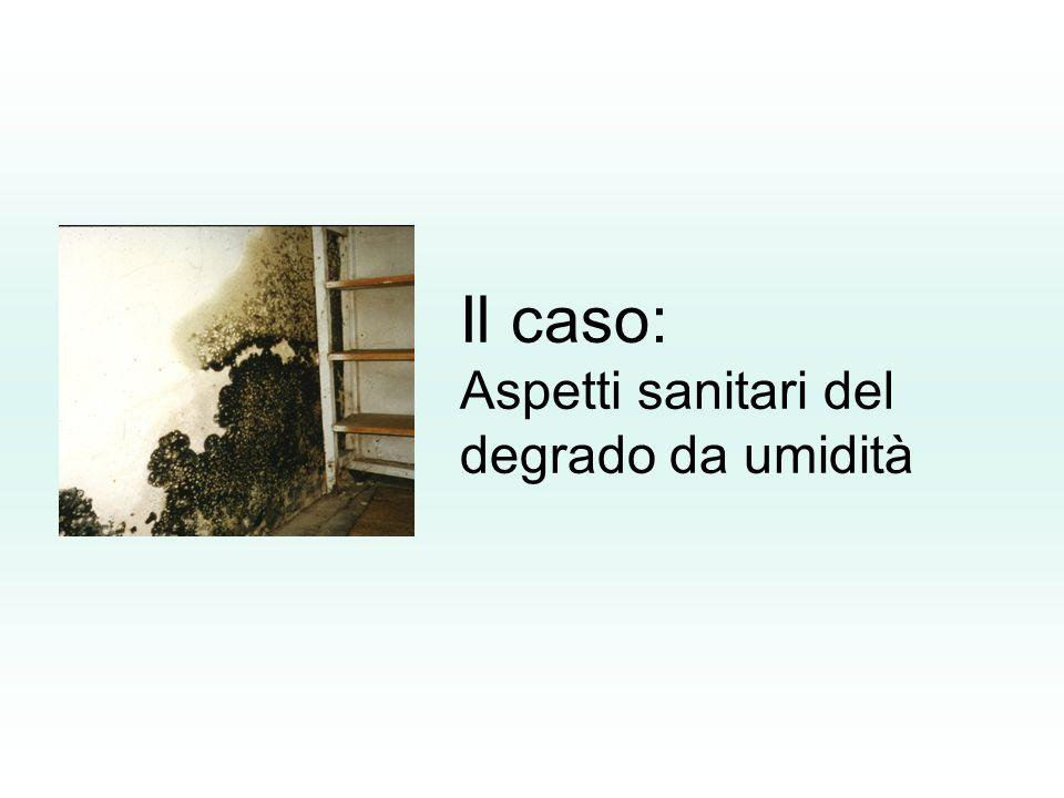 D Alessandro -Indoor23 Limiti di accettabilità Concentrazioni di funghi vitali al di sotto di 100 CFU/m 3 daria (CFU = Unità Formanti Colonia) sono usualmente ritenute basse, invece quelle che superano 1000 CFU/m 3 sono considerate elevate.