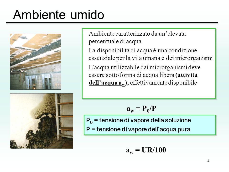 5 Umidità e sviluppo microbico batteri Gram negativi: a w > 0.97 batteri Gram positivi: a w > 0.90 Muffe: a w > 0.80 No moltiplicazione batterica: UR <75% No sviluppo microbico:UR<61% No sviluppo microbico:UR<61% Attività dellacqua