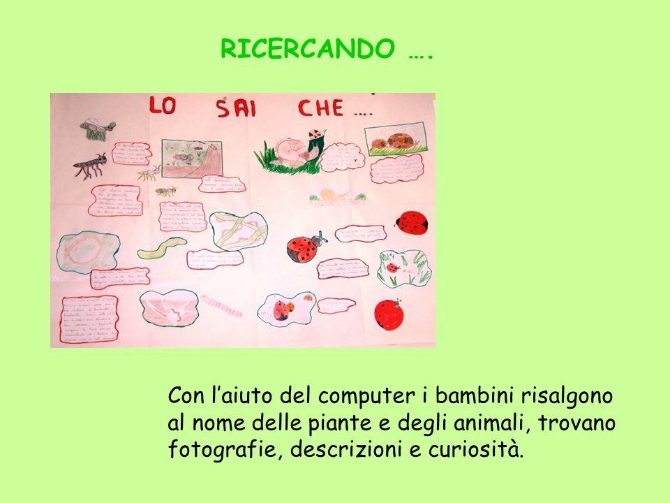 RICERCANDO …. Con laiuto del computer i bambini risalgono al nome delle piante e degli animali, trovano fotografie, descrizioni e curiosità.