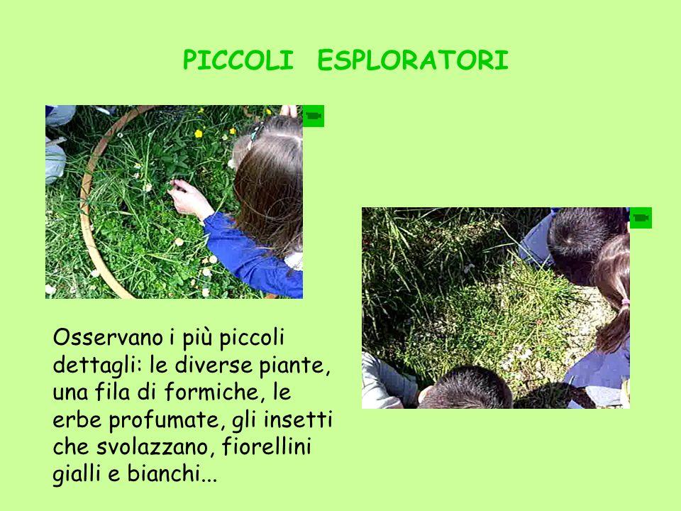 PICCOLI ESPLORATORI Osservano i più piccoli dettagli: le diverse piante, una fila di formiche, le erbe profumate, gli insetti che svolazzano, fiorelli
