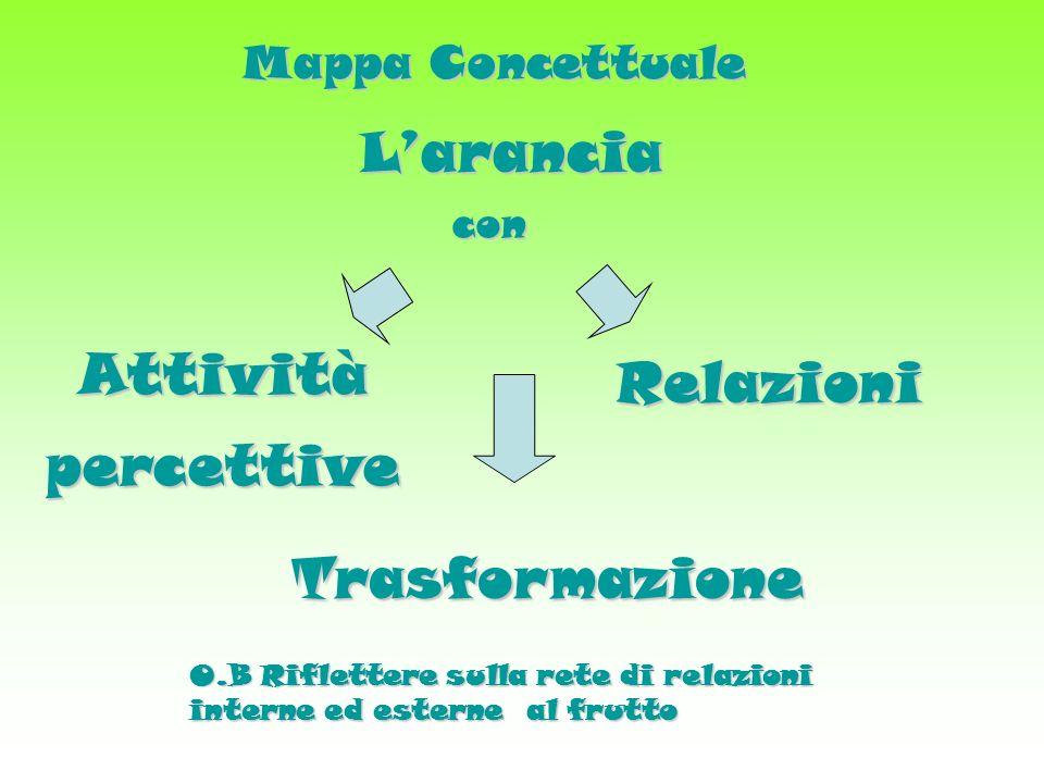 Mappa Concettuale Larancia con Attivitàpercettive Relazioni Trasformazione O.B Riflettere sulla rete di relazioni interne ed esterne al frutto
