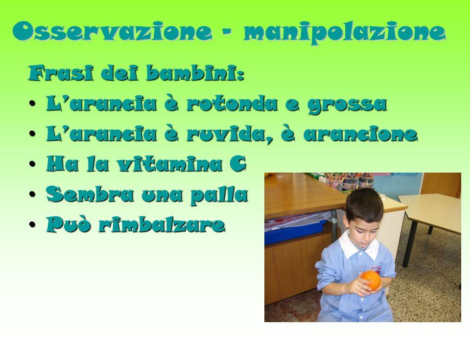 Osservazione - manipolazione Frasi dei bambini: Larancia è rotonda e grossa Larancia è rotonda e grossa Larancia è ruvida, è arancione Larancia è ruvida, è arancione Ha la vitamina C Ha la vitamina C Sembra una palla Sembra una palla Può rimbalzare Può rimbalzare