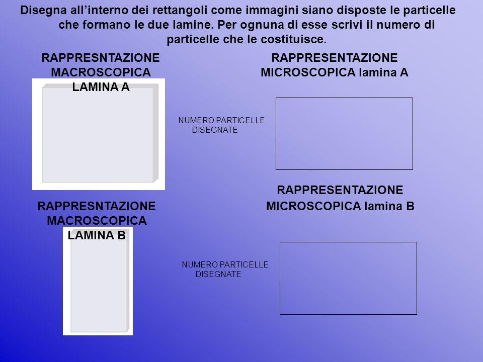 Disegna allinterno dei rettangoli come immagini siano disposte le particelle che formano le due lamine. Per ognuna di esse scrivi il numero di partice