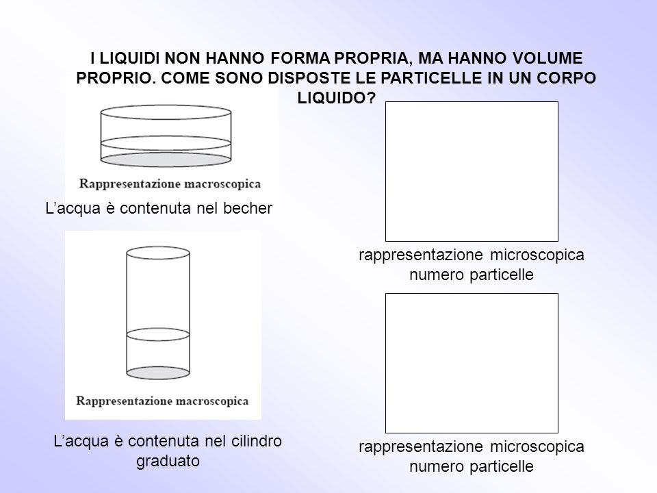 Lacqua è contenuta nel becher rappresentazione microscopica numero particelle Lacqua è contenuta nel cilindro graduato rappresentazione microscopica n