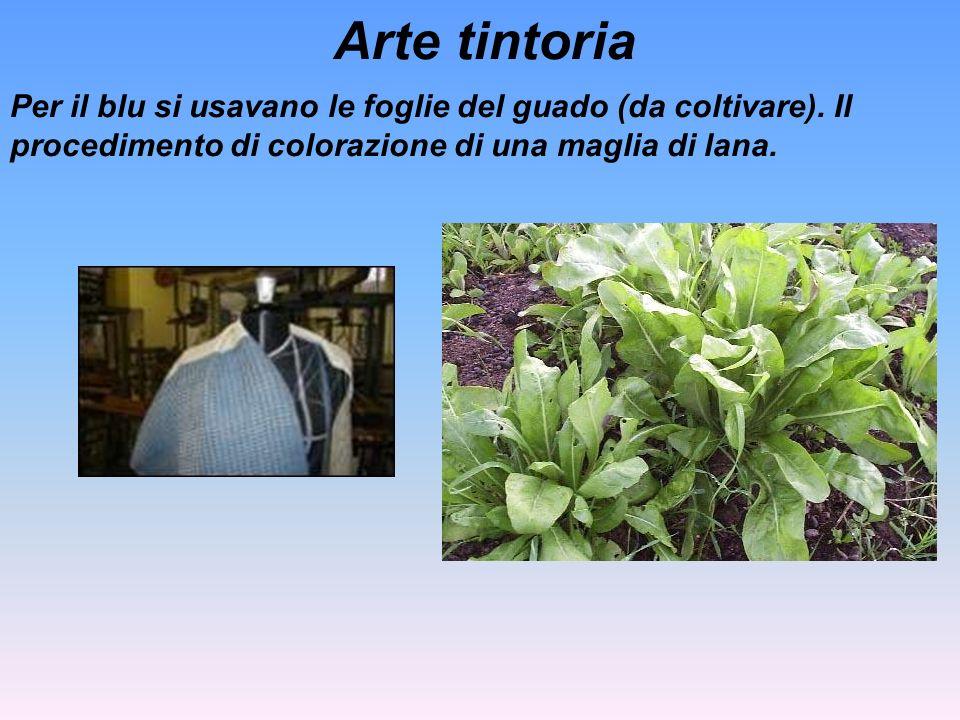 Arte tintoria Per il blu si usavano le foglie del guado (da coltivare). Il procedimento di colorazione di una maglia di lana.