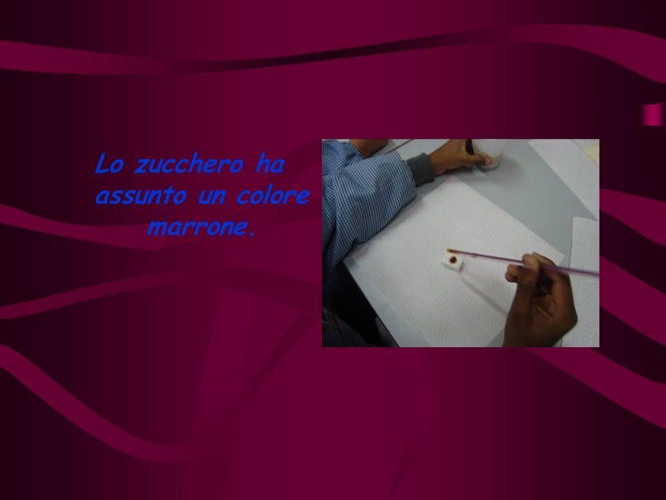 Il pancarrè a contatto con la tintura di iodio ha assunto un colore blu/viola.