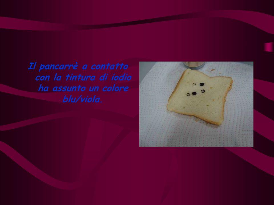Conclusione Il pancarrè e il crostino contengono amido perché hanno assunto una colorazione blu/viola.