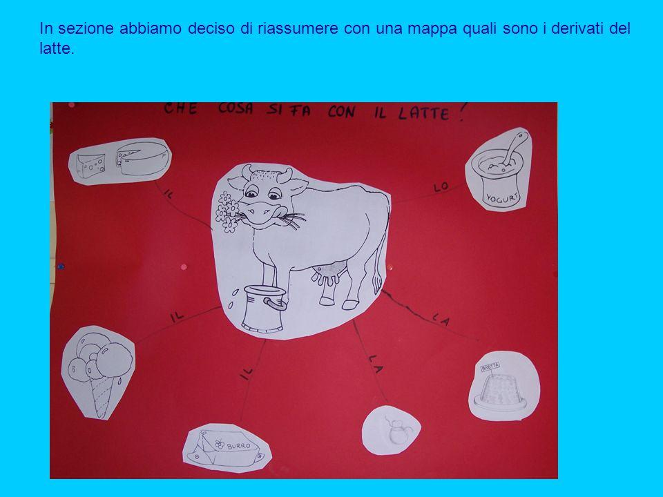 In sezione abbiamo deciso di riassumere con una mappa quali sono i derivati del latte.