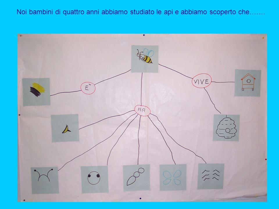 Noi bambini di quattro anni abbiamo studiato le api e abbiamo scoperto che…….