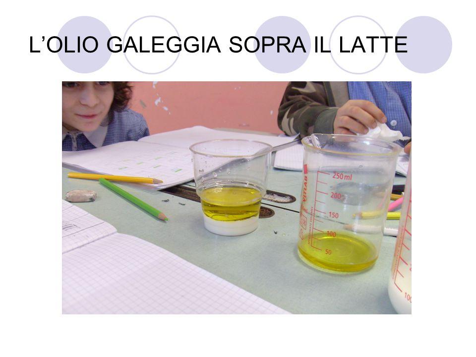 LOLIO GALEGGIA SOPRA IL LATTE