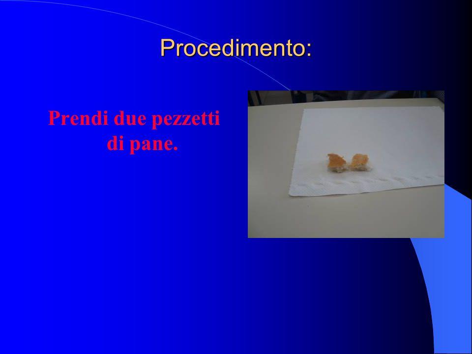 Procedimento: Prendi due pezzetti di pane.