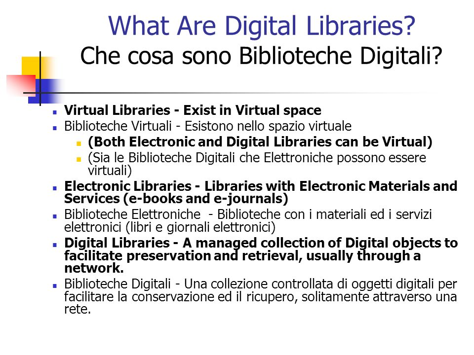 Digital Library Issues in the U.S.