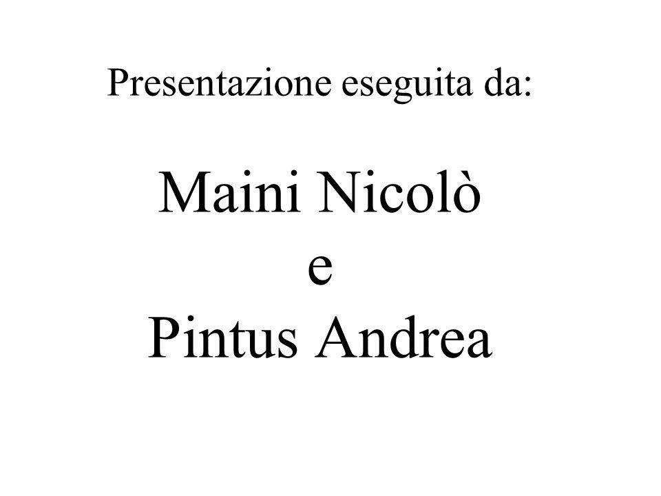 Presentazione eseguita da: Maini Nicolò e Pintus Andrea