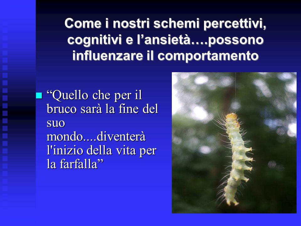 Come i nostri schemi percettivi, cognitivi e lansietà….possono influenzare il comportamento Quello che per il bruco sarà la fine del suo mondo....dive