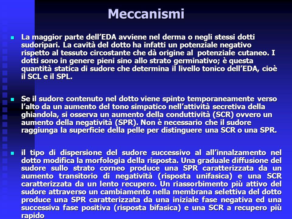 Meccanismi La maggior parte dellEDA avviene nel derma o negli stessi dotti sudoripari.