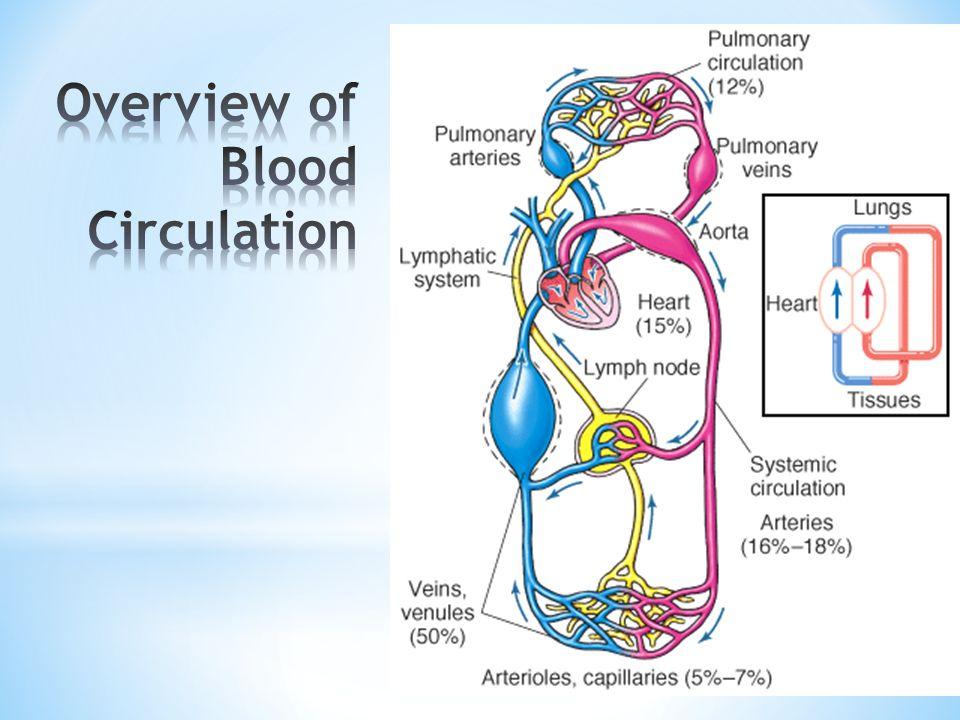 * Regolazione del Sistema Renina - Angiotensina * Il complesso sistema rennina-angiotensina presiede alla regolazione della pressione arteriosa, cioè della forza esercitata dal sangue sulle pareti delle arterie, da cui dipende l adeguata perfusione di sangue a tutti i distretti corporei; tale pressione è influenzata, tra l altro, dalla quantità di sangue che il cuore spinge quando pompa, dalla sua forza di contrazione e dalle resistenze che si oppongono al libero scorrere del torrente ematico.