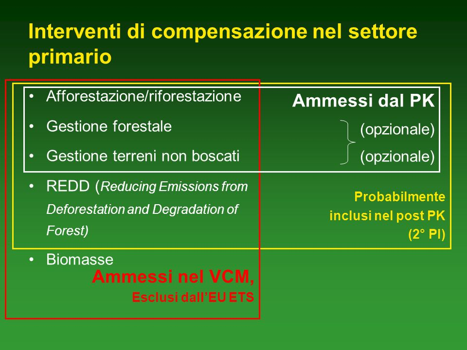 Interventi di compensazione nel settore primario Probabilmente inclusi nel post PK (2° PI) Afforestazione/riforestazione Gestione forestale Gestione terreni non boscati REDD ( Reducing Emissions from Deforestation and Degradation of Forest) Biomasse Ammessi nel VCM, Esclusi dallEU ETS Ammessi dal PK (opzionale)