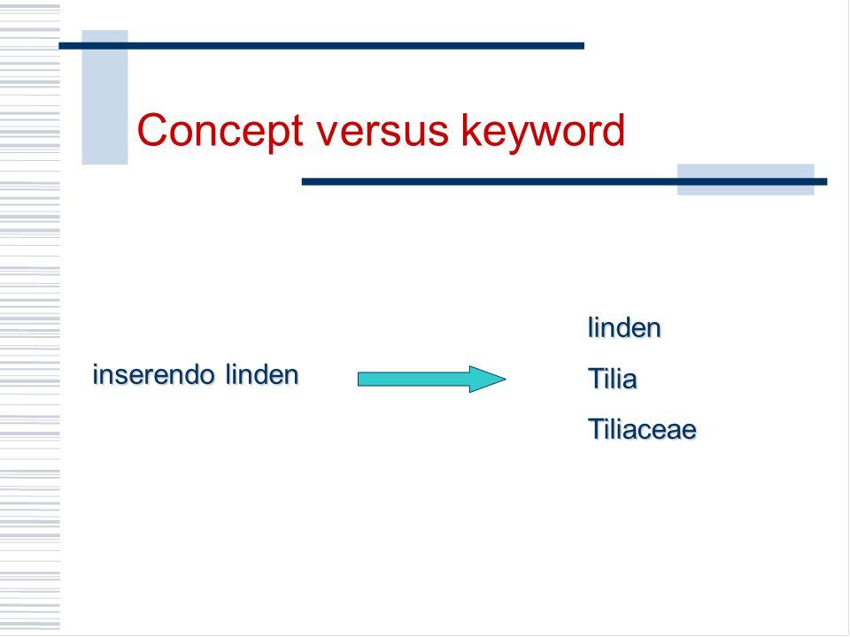 inserendo linden lindenTiliaTiliaceae Concept versus keyword