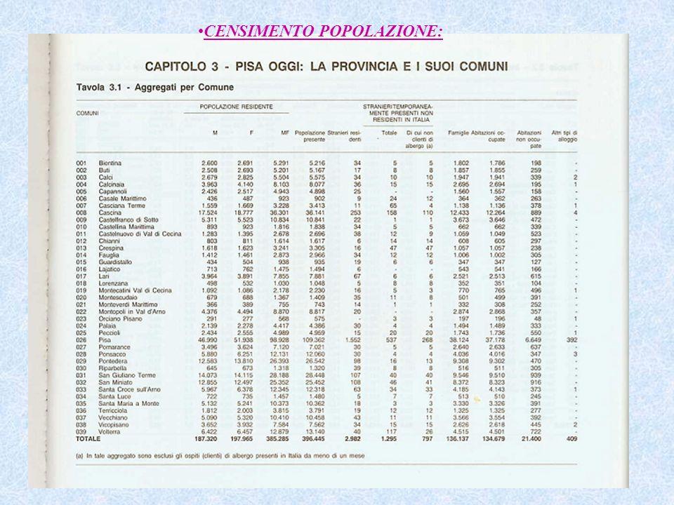 CENSIMENTO POPOLAZIONE: