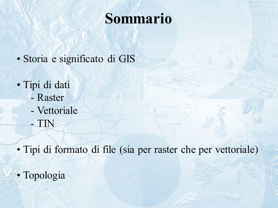 Sommario Storia e significato di GIS Tipi di dati - Raster - Vettoriale - TIN Tipi di formato di file (sia per raster che per vettoriale) Topologia