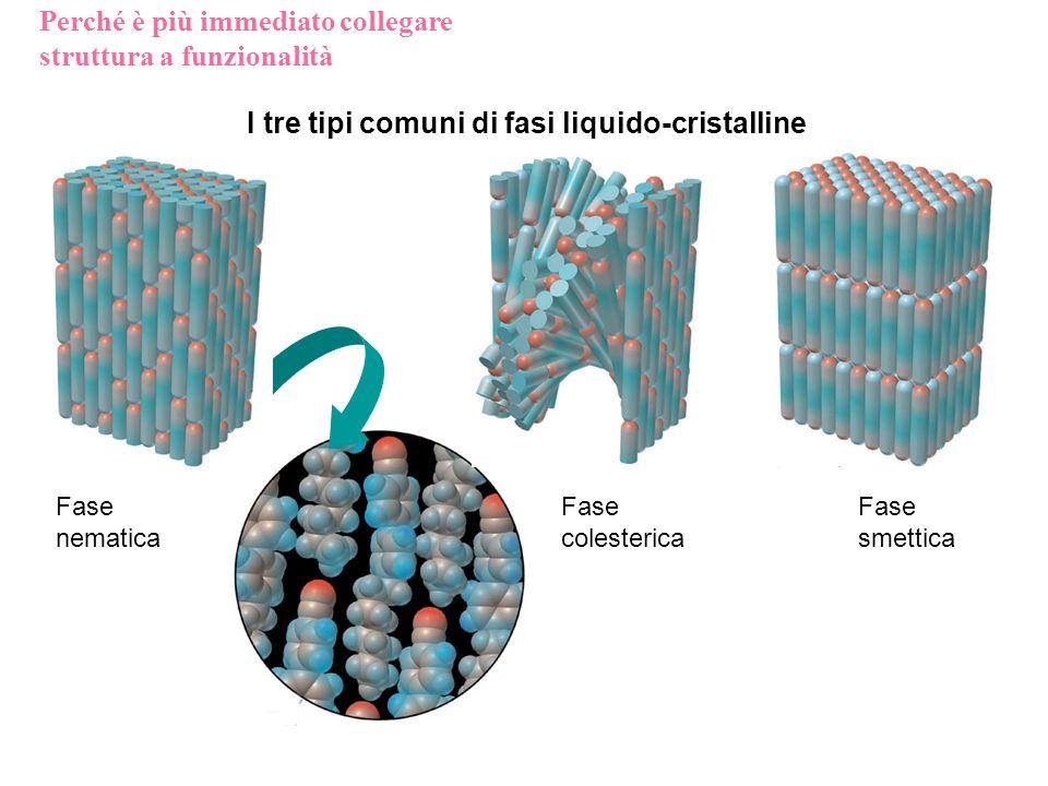 I tre tipi comuni di fasi liquido-cristalline Fase nematica Fase smettica Fase colesterica Perché è più immediato collegare struttura a funzionalità